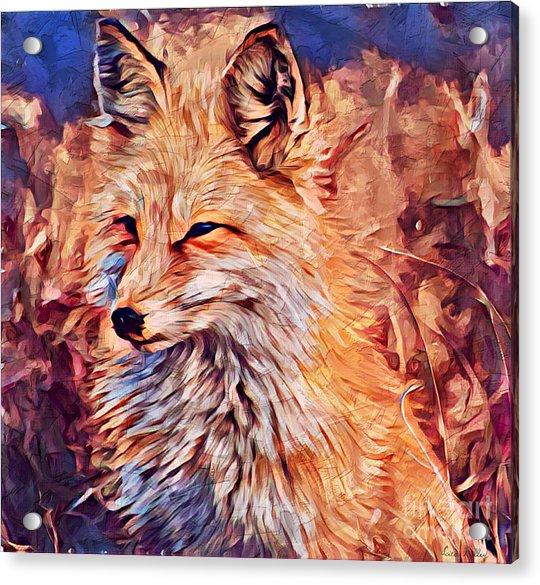Fox 2 Acrylic Print
