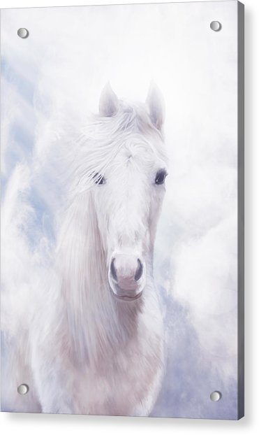 Free Spirit Acrylic Print