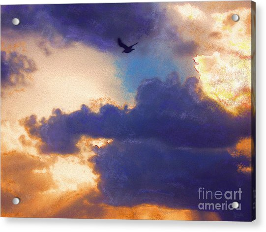 Free Acrylic Print