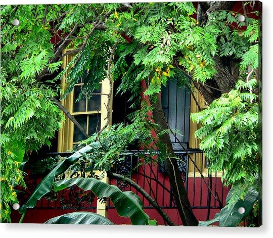 French Quarter Foliage  Acrylic Print