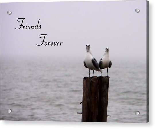 Friends Forever Acrylic Print