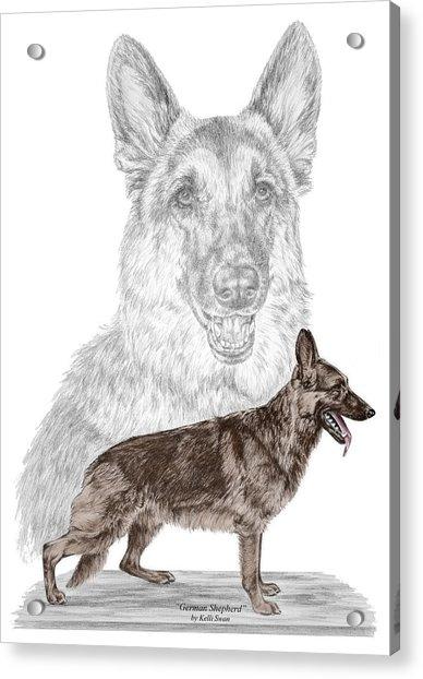 German Shepherd Art Print - Color Tinted Acrylic Print