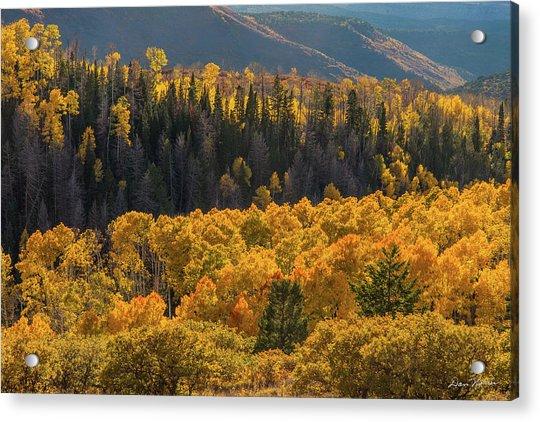 Geyser Pass Road, La Sal Mountains Acrylic Print