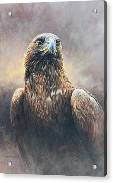 Acrylic Print featuring the painting Golden Eagle Portrait by Alan M Hunt