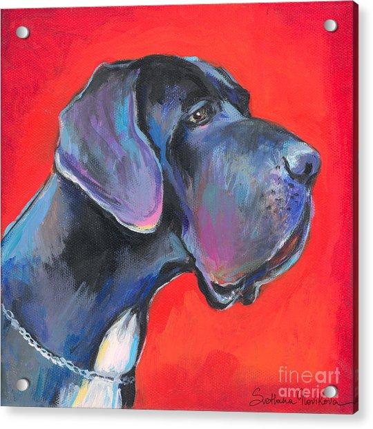 Great Dane Painting Acrylic Print