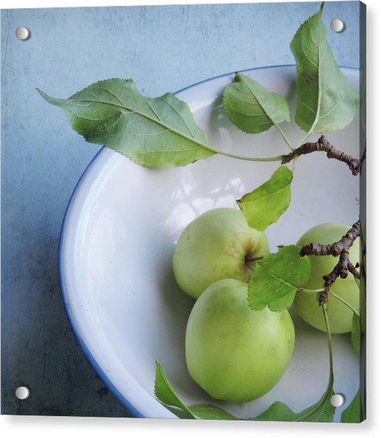 Acrylic Print featuring the photograph Green Apples by Sally Banfill