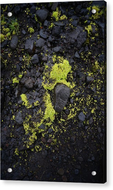 Green On Black On Iceland's Fimmvorduhals Trail Acrylic Print