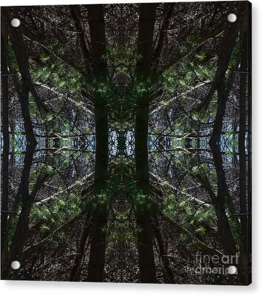 Guards Of The Forest Acrylic Print
