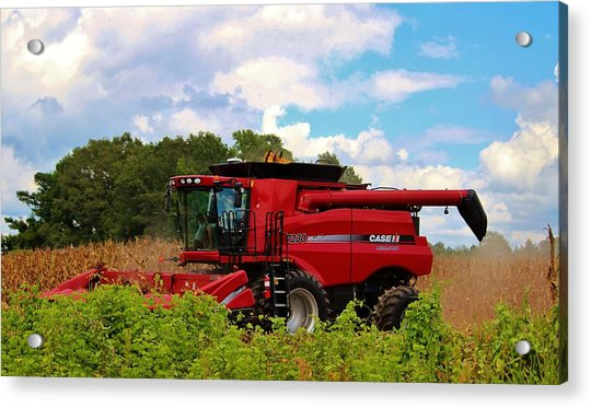 Acrylic Print featuring the photograph Harvest Time by Cynthia Guinn