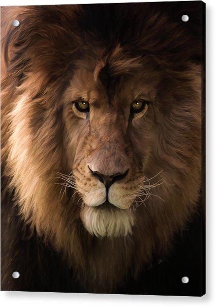 Heart Of A Lion - Wildlife Art Acrylic Print