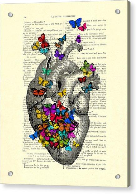 Heart With Rainbow Butterflies Acrylic Print