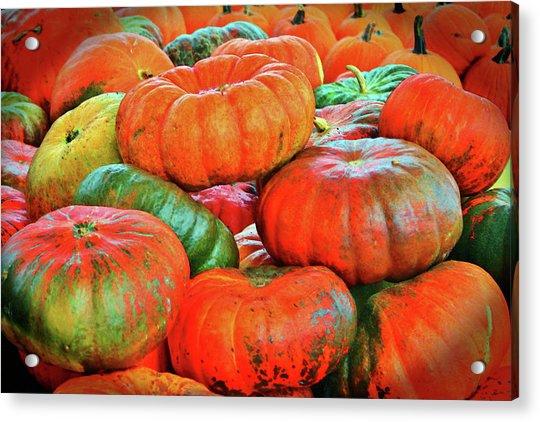 Acrylic Print featuring the photograph Heirloom Pumpkins by Cynthia Guinn