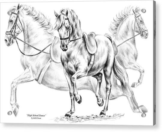 High School Dance - Lipizzan Horse Print Acrylic Print