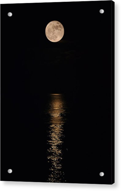 Holiday Magic - Lunar Art Acrylic Print