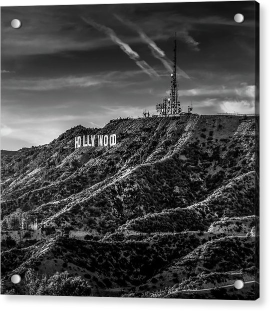 Hollywood Sign - Black And White Acrylic Print