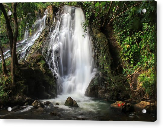 Hoopii Falls Acrylic Print