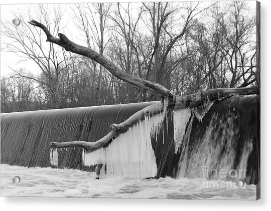 Icicle Laden Branch Over The Waterfall Acrylic Print