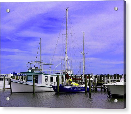 I Would Rather Be Sailing Acrylic Print