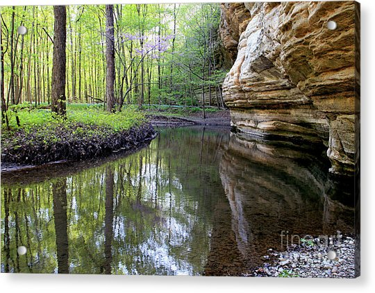 Illinois Canyon In Spring Starved Rock State Park Acrylic Print