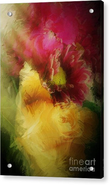 Illuminated Acrylic Print