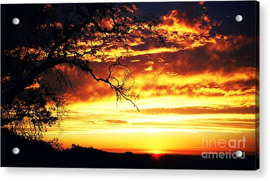 In Memory Of Acrylic Print by JoAnn SkyWatcher