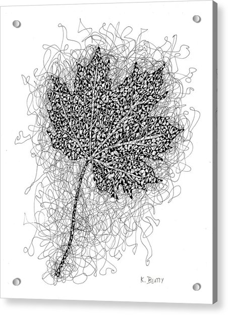 Ink Drawing Of Maple Leaf Acrylic Print