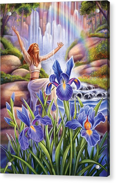 Iris - Fine Tune Acrylic Print