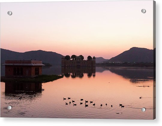 Jal Mahal, Jaipur, India Acrylic Print
