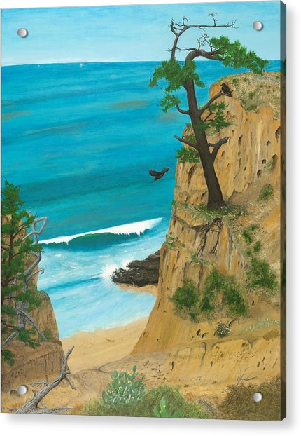 January At Torrey Pines Acrylic Print