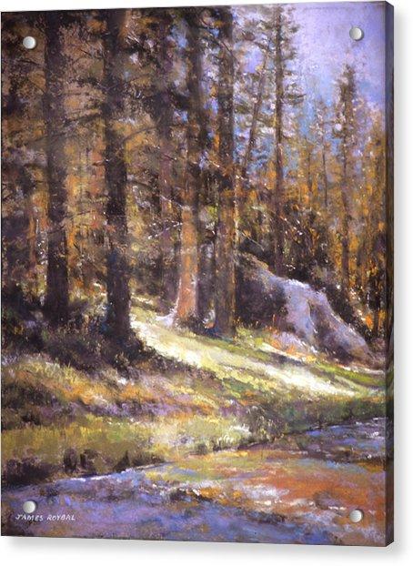 Jemez Light Acrylic Print by James Roybal