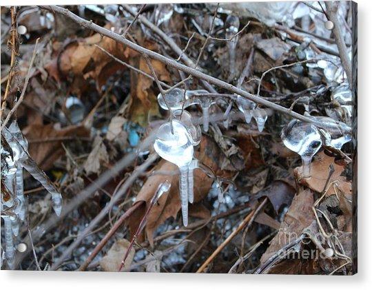 Jewel Of Winter 1 Acrylic Print