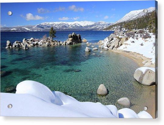 Jewels Of Winter Acrylic Print