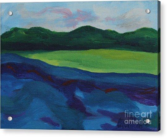 Lake Visit Acrylic Print