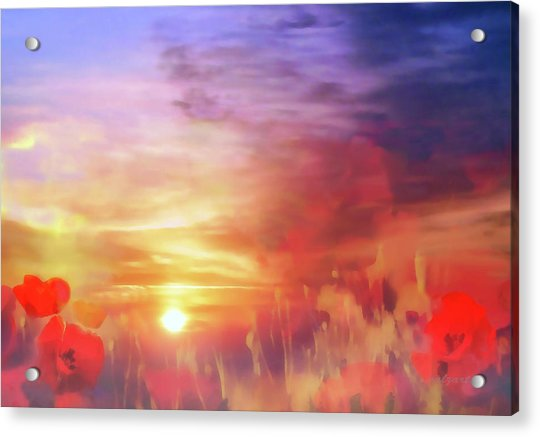 Acrylic Print featuring the digital art Landscape Of Dreaming Poppies by Valerie Anne Kelly