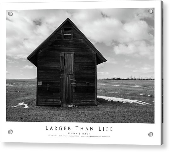 Larger Than Life Acrylic Print by Steven Tryon