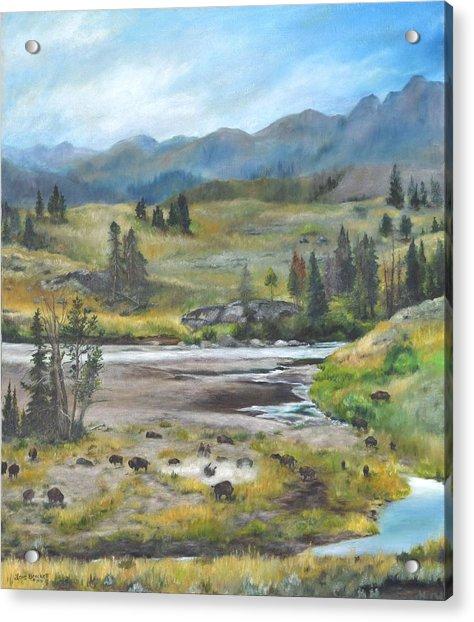 Late Summer In Yellowstone Acrylic Print