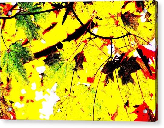 Lemonade Acrylic Print