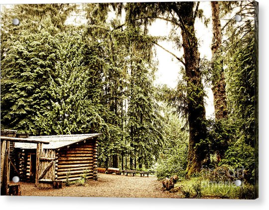 Lewis And Clark's Fort Clatsop In The Old Growth Forest Acrylic Print by Lincoln Rogers