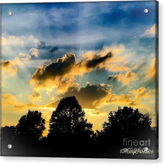 Life With Out Words Acrylic Print