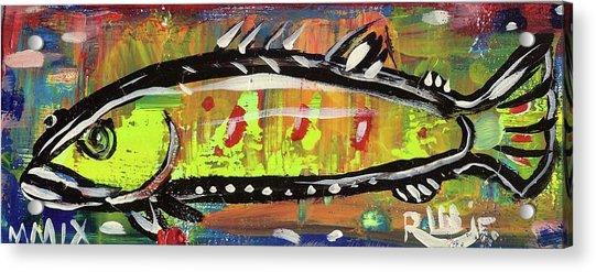 Lil Funky Folk Fish Number Twelve Acrylic Print