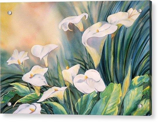 Lily Light Acrylic Print
