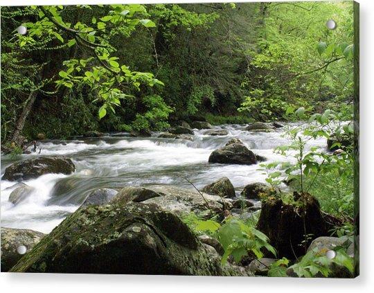 Litltle River 1 Acrylic Print