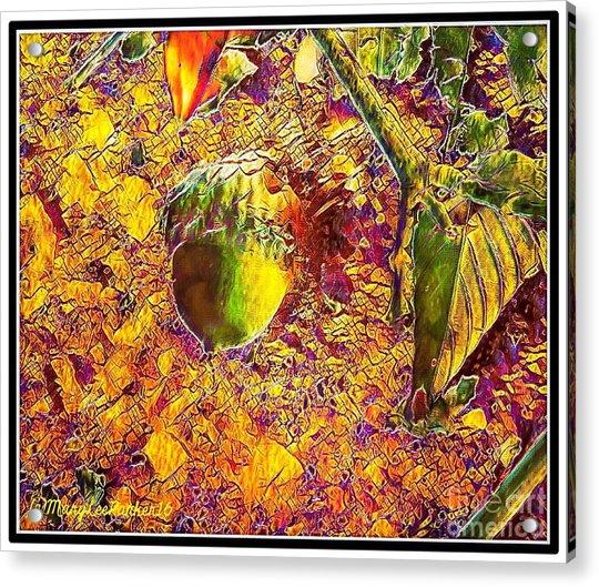 Little Acorn Acrylic Print