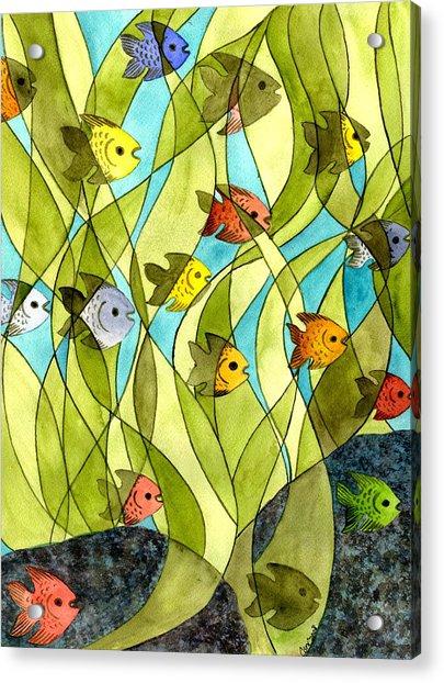 Little Fish Big Pond Acrylic Print