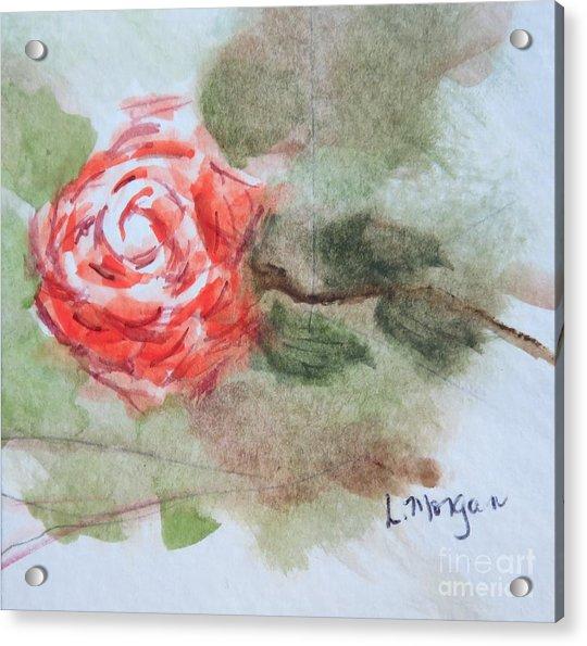 Little Rose Acrylic Print