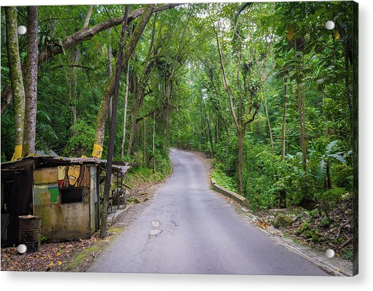 Lonely Country Road Acrylic Print