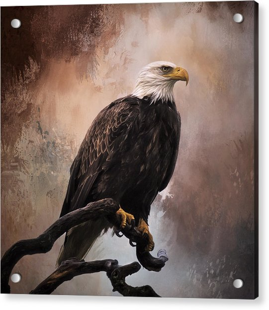 Looking Forward - Eagle Art Acrylic Print