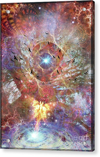 Lost In Transformations Acrylic Print