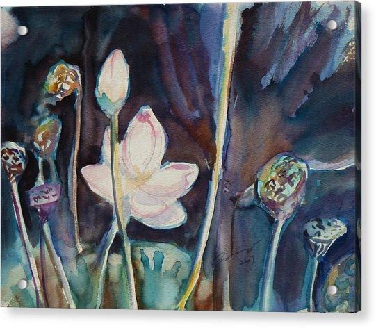 Lotus Study II Acrylic Print