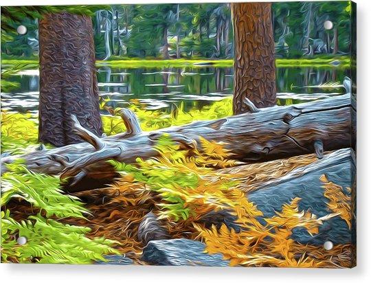 Magic Light Lake Acrylic Print